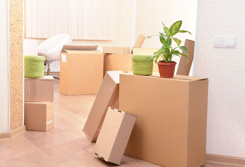 Common Moving Mistakes & Homeowners Insurance in Phoenix, AZ